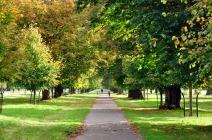Phoenix park, foto de la página web de dublin